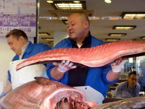 découpe poisson